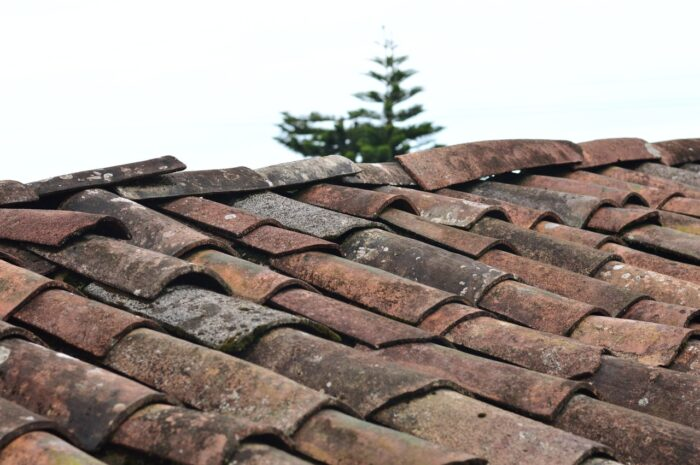 What Should You Consider Before Getting a New Roof?